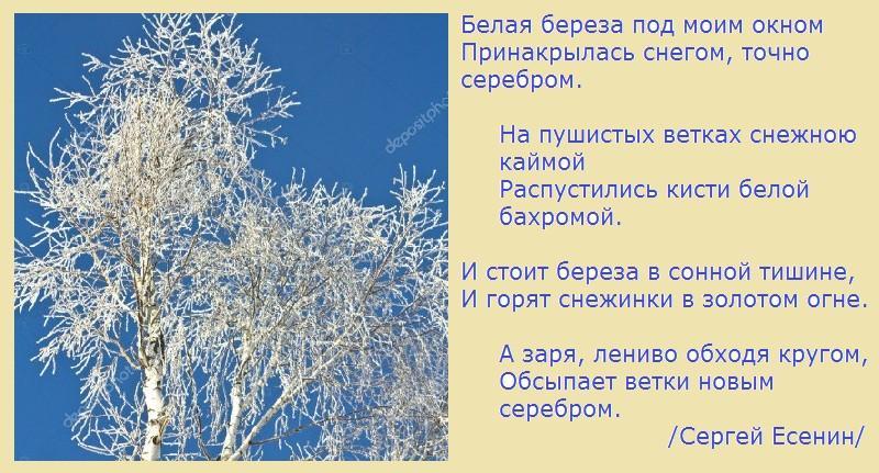 Серебряный мир