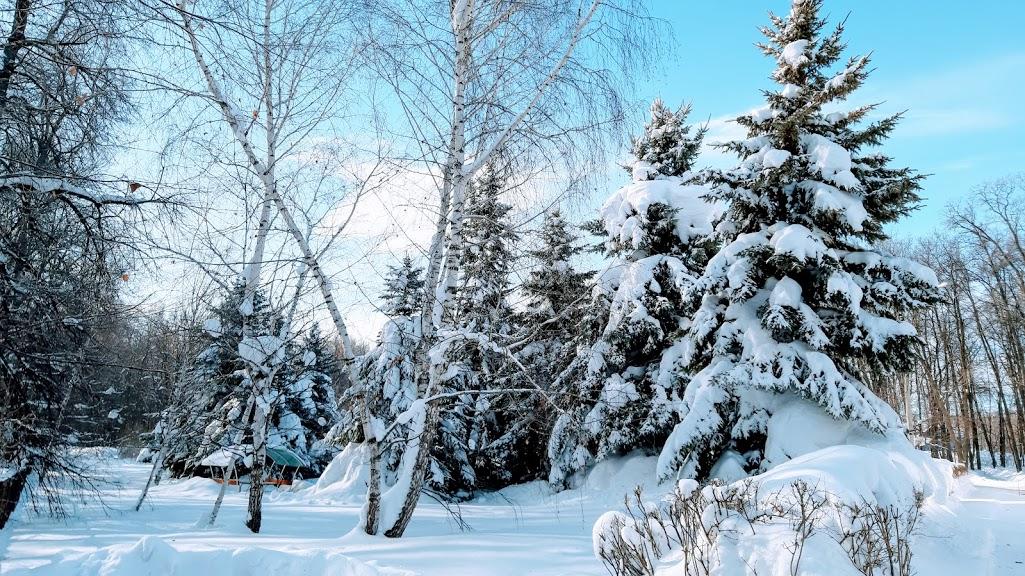 Зима - магическая и сказочная