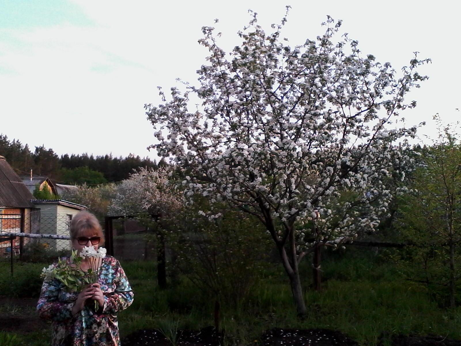 Весна фото